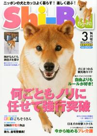 shi-ba201403